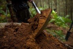 shovel-in-barrow