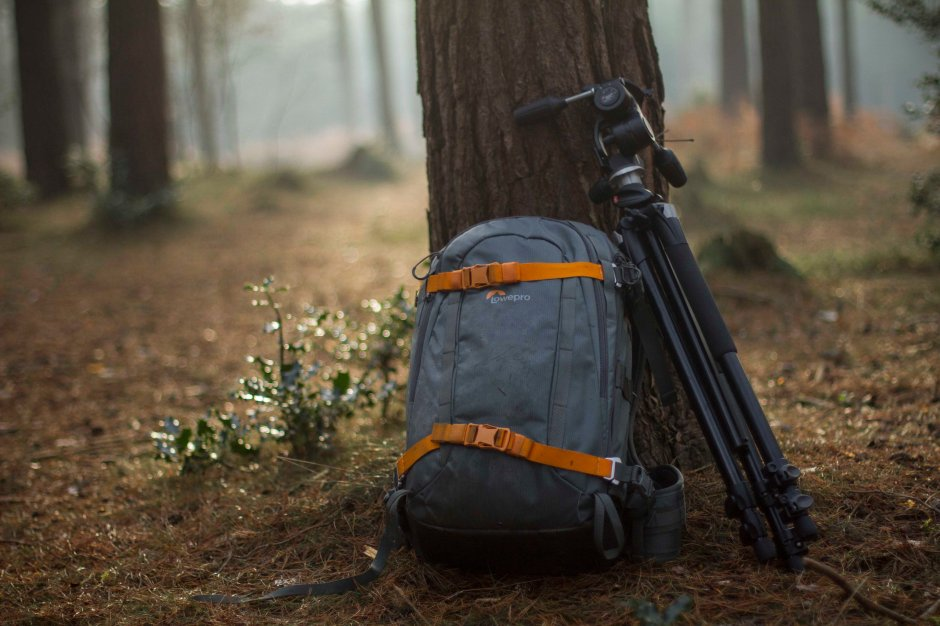 lowepro-whistler-against-tree