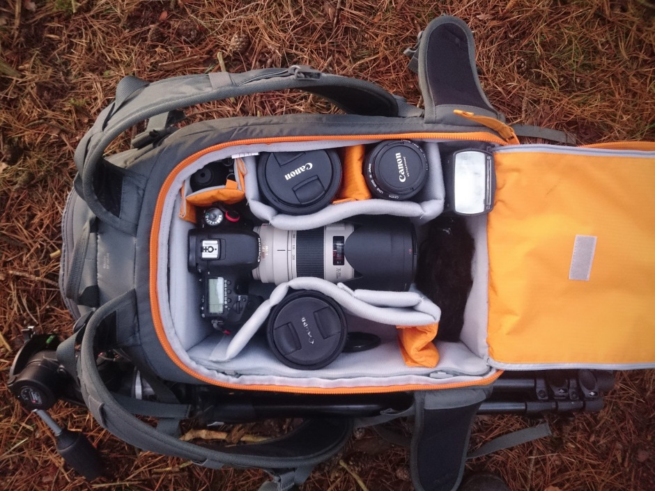 lowepro-whistler-contents