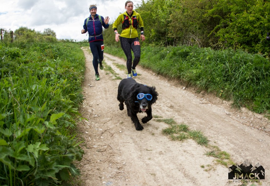 XNRG Devils Challenge Day 1 Dog on trail