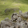 Mountain Fuel Billy Bland Relay Great Gable Rock Long shot