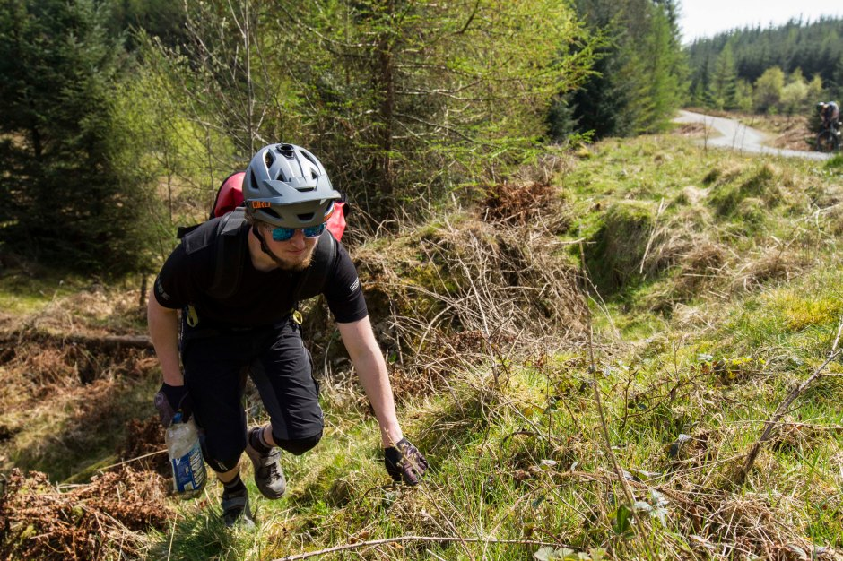 TFT Grizedale 1