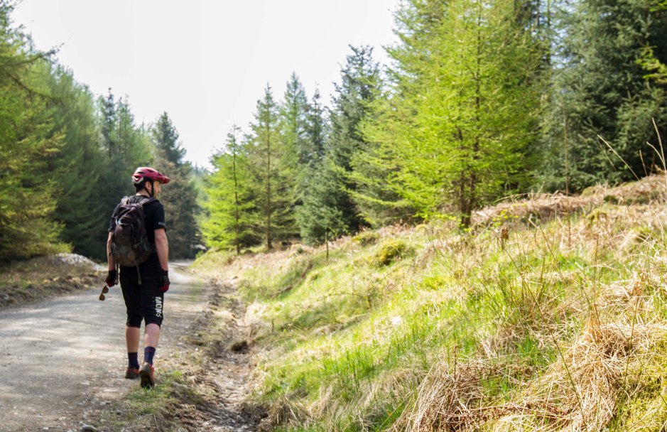 TFT Grizedale 12